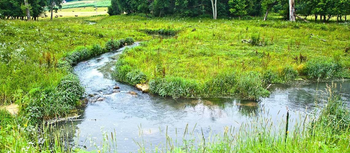 Southeast Minnesota Trout Streams